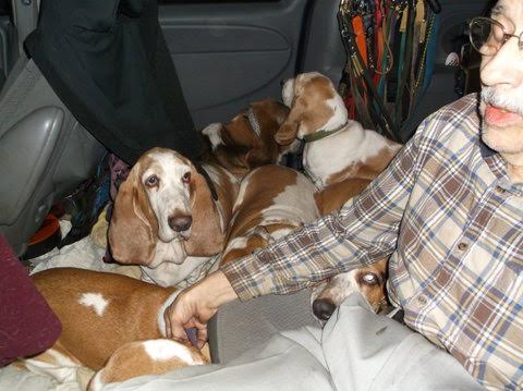 Considering a new hound-unload2.jpg